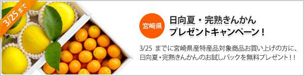 宮崎県産特産柑橘プレゼントキャンペーン
