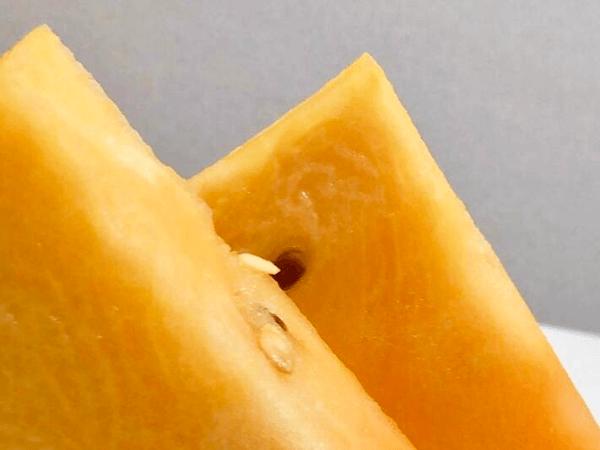 スイカ,金色羅王,植木町産,糖度